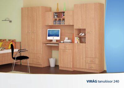 tanulo_VIRAG