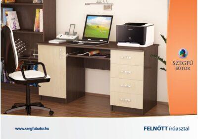 kisbutor_felnott-iroasztal--1200x842