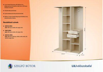 lili-eloszobafal2-1200x842